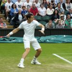 On his way to the title: Andy Murray at Wimbledon 2013